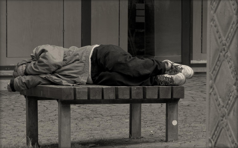 essay mental illness homeless